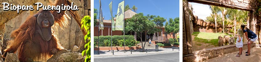 _Bioparc-Fuengirola
