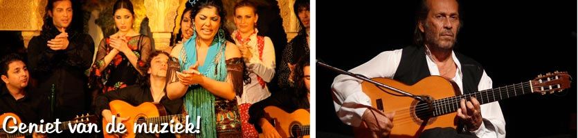 Musicá-de-flamenca